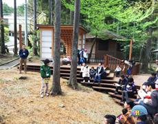 神奈川ゆめコープ様主催 「森のおさんぽと積み木あそび」企画に参加しました。