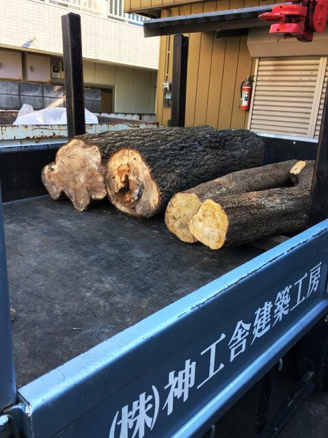 思い出もくもく企画:人見さんのお庭の木 【製材】