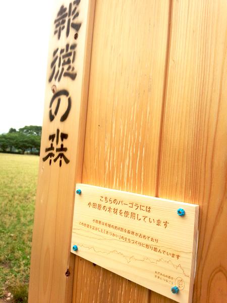 上府中公園(小田原球場)ベンチ修理のお手伝いをしました。