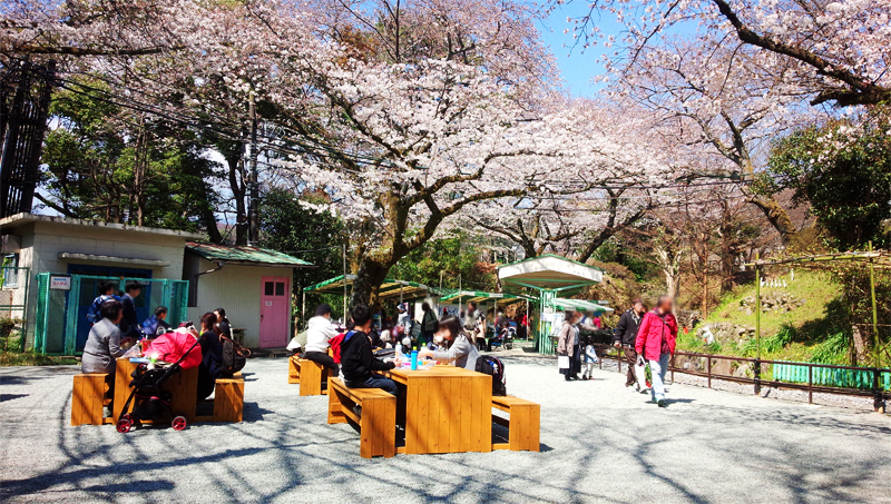 小田原城こども遊園地内にベンチ・ゴミ箱を設置しました。